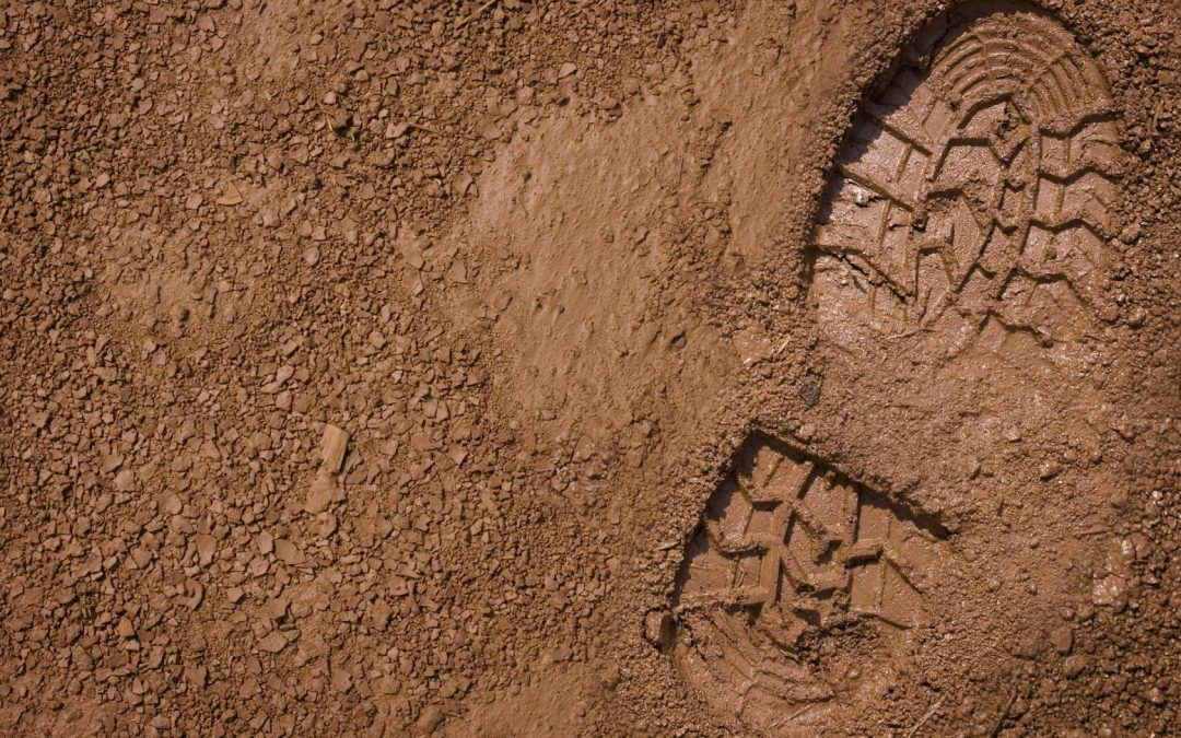 Stone in my Shoe